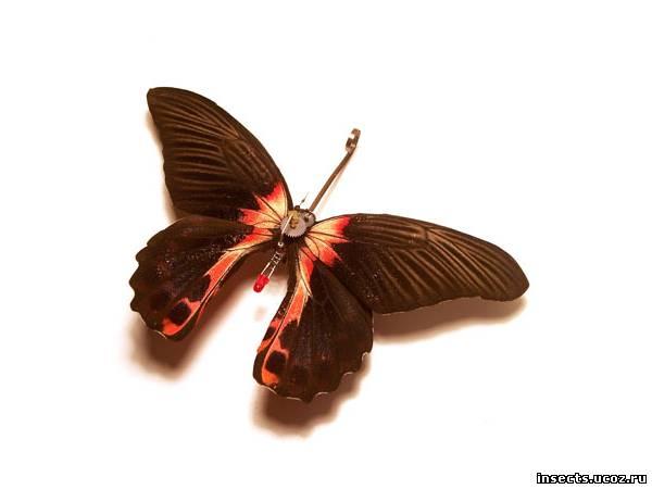Бабочка в стиле стимпанк