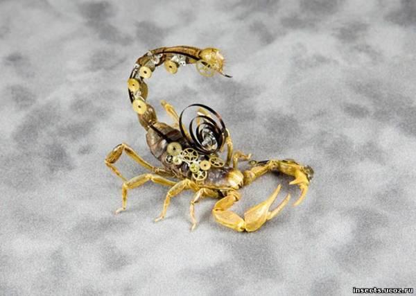 Стимпанк скорпион